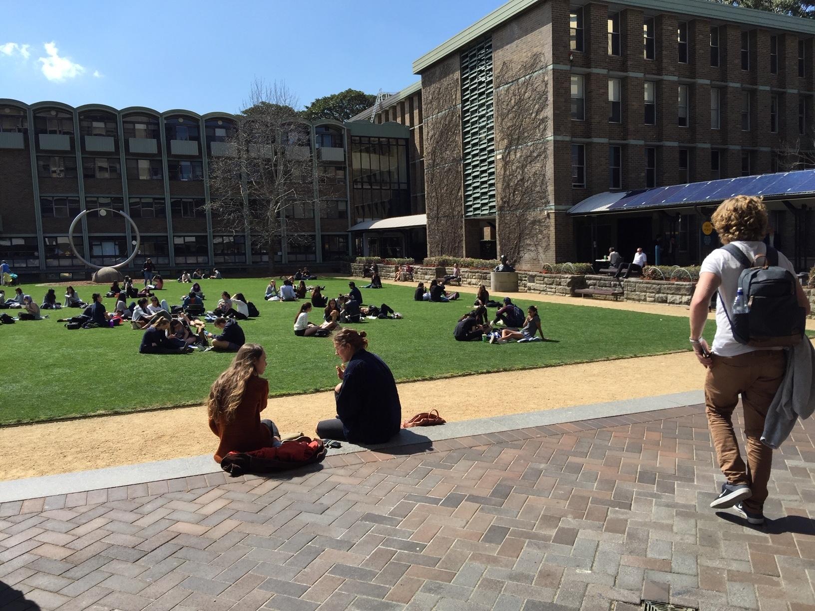 海外の大学の風景