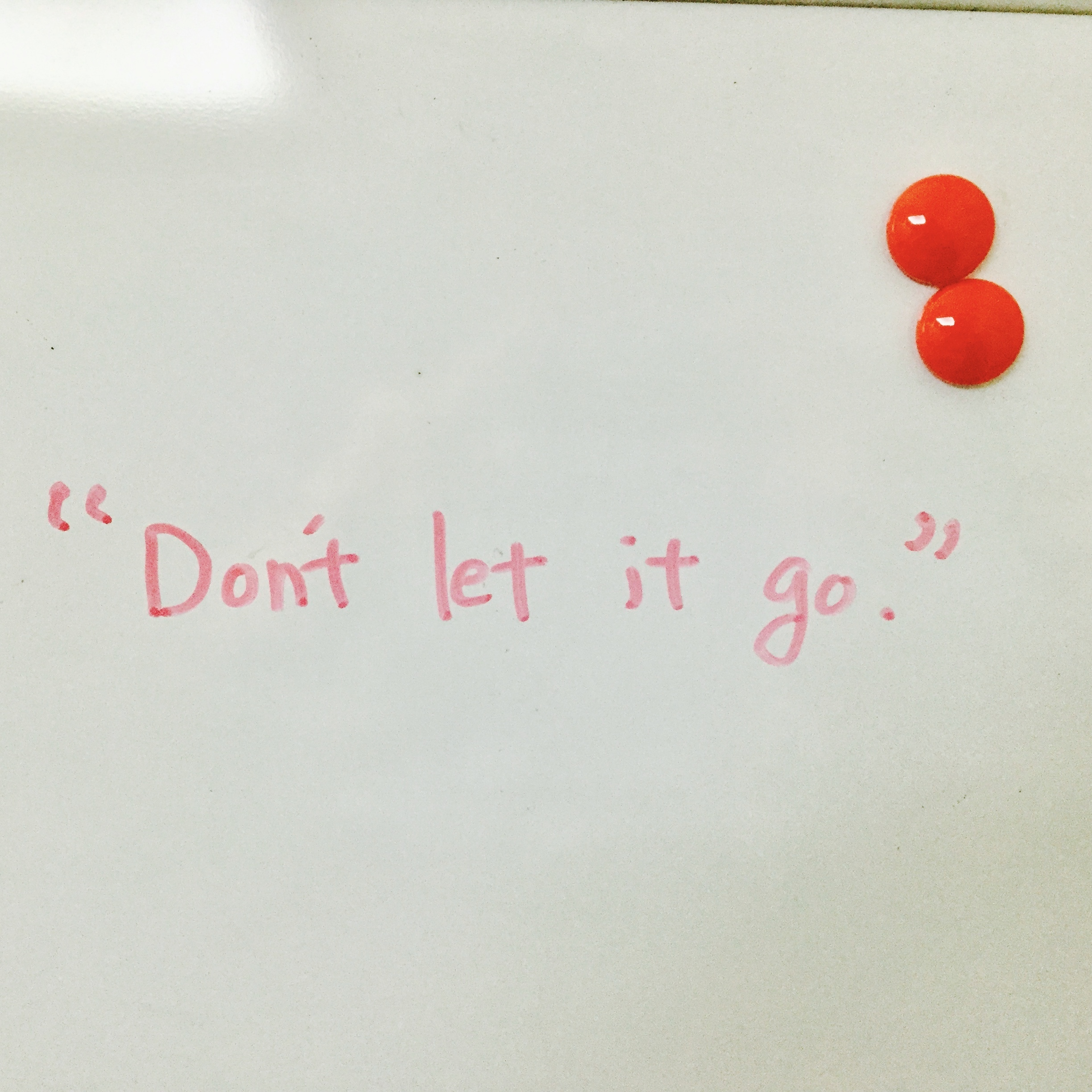 """Don't let it go"" の写真です。"