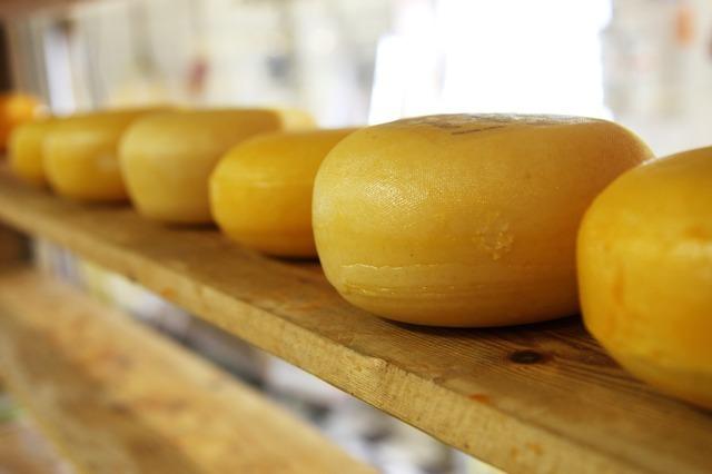 チーズが6つ並んでいる。