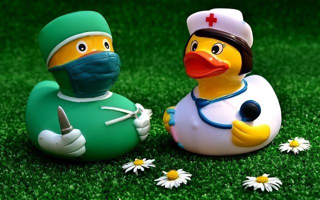 アヒルがお医者さんと看護師さんの格好をしている写真。