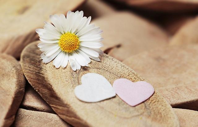 白い花とハートの写真です。