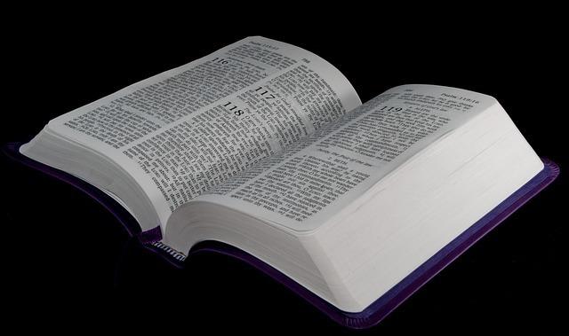 英語辞書の写真