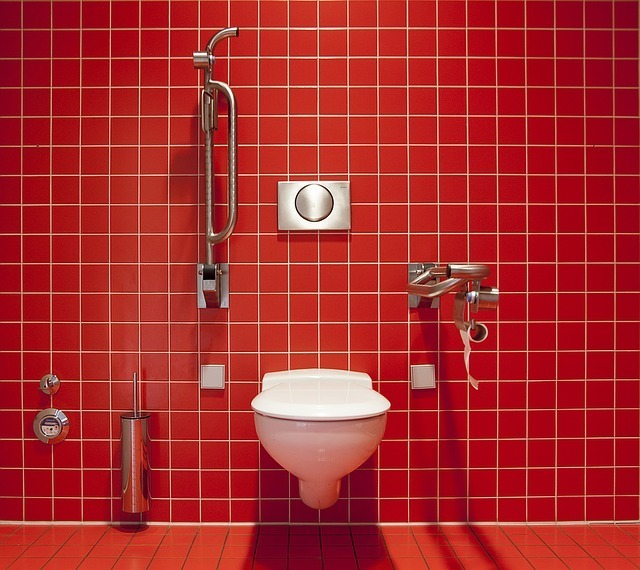 赤いタイルの背面とトイレとシャワー