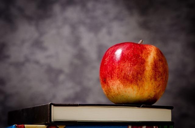 本の上に置かれた1つのリンゴの写真