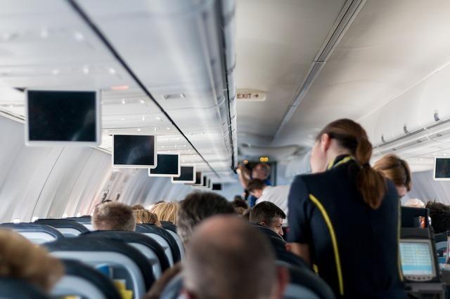 旅客機内でサービスする客室乗務員の後姿の写真