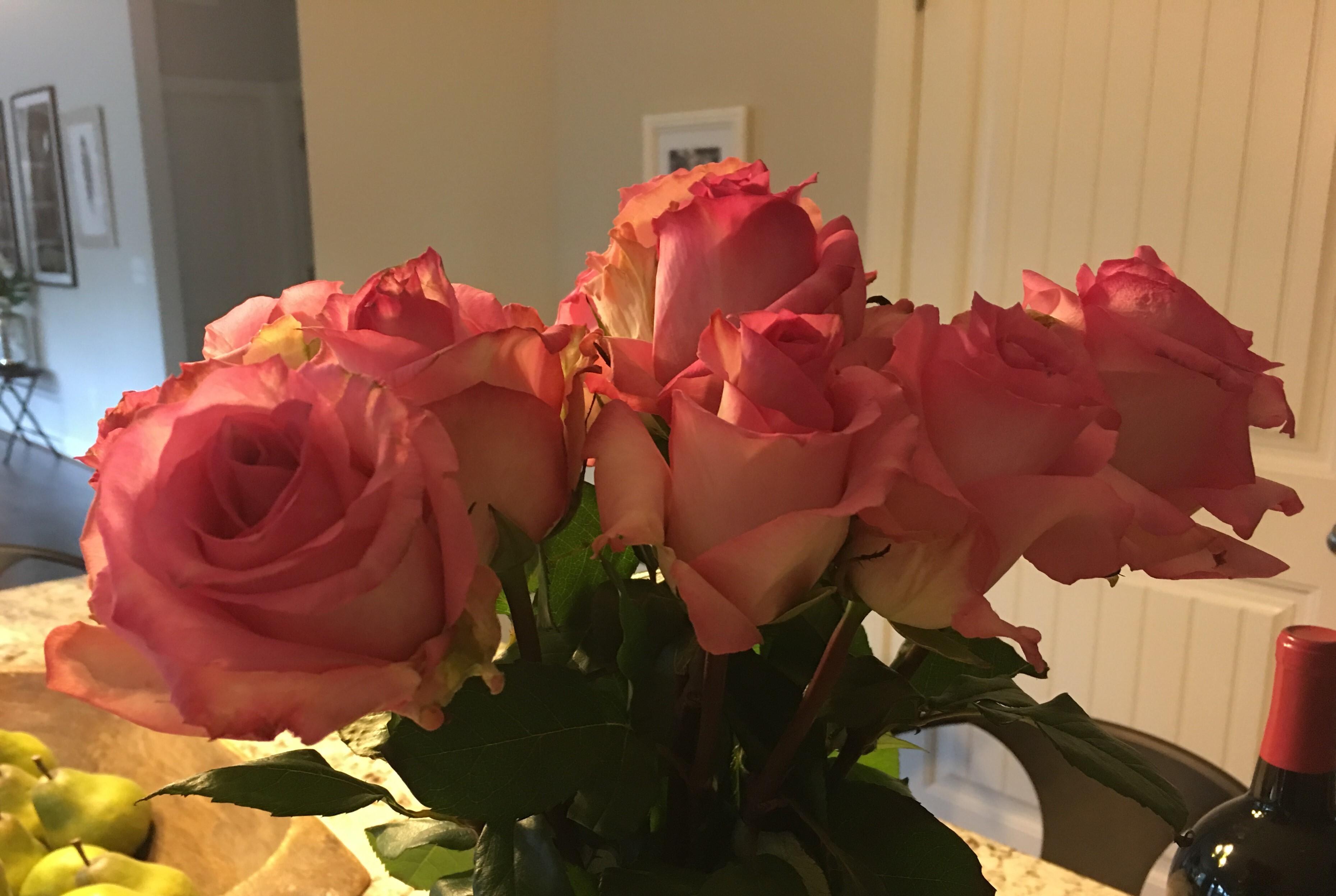 誕生日にもらい感動したバラ