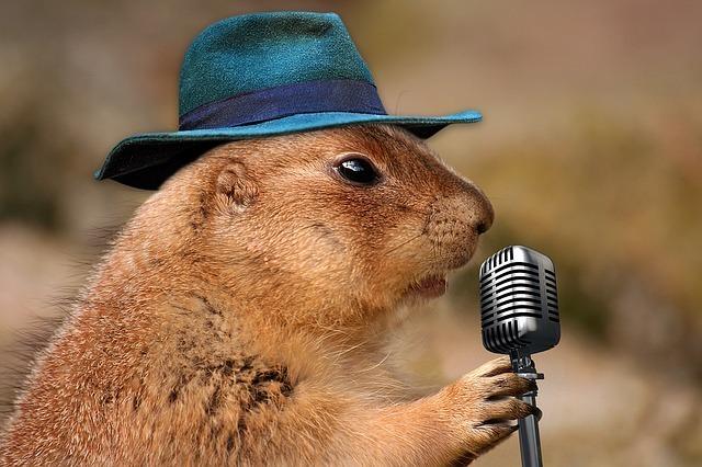 感動する歌を歌う