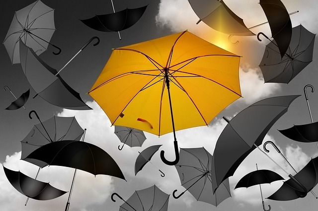 ユニークな傘