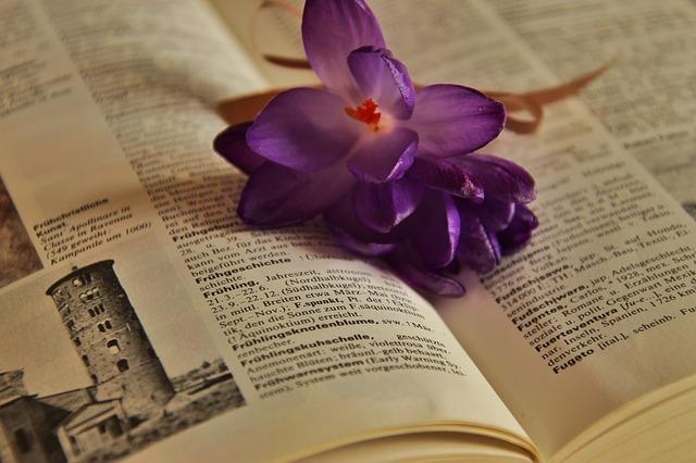 辞書の上に花が置かれている写真です。