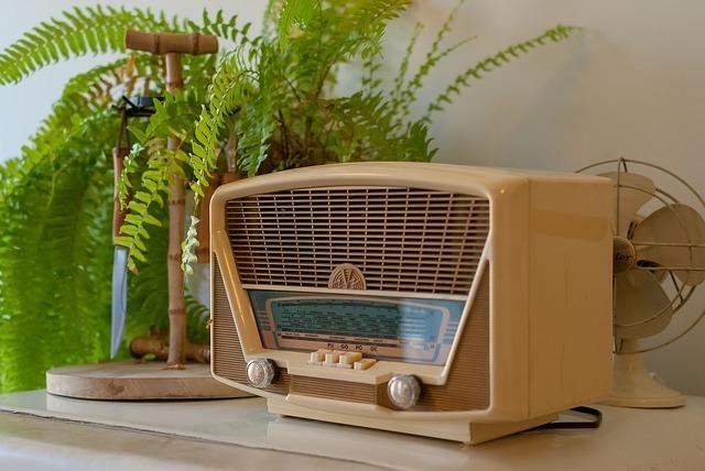 机の上にラジオと観葉植物が乗っている