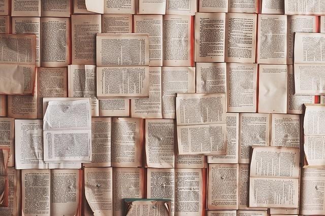 本がたくさん並んでいる