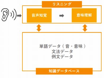 5Step構造説明図