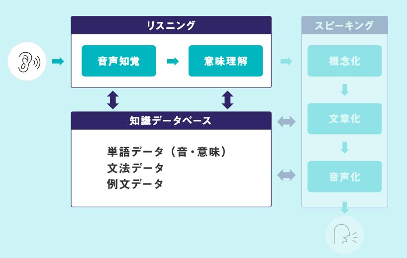 5step図